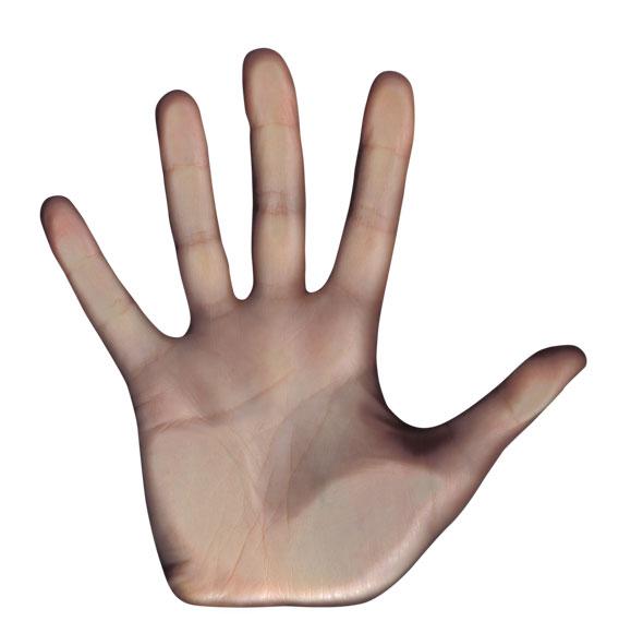 HandSignals_2_27.1
