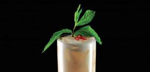 November Drink Recipes